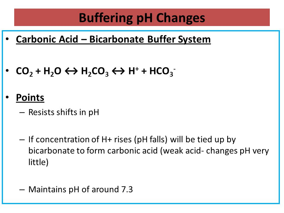 Buffering pH Changes Carbonic Acid – Bicarbonate Buffer System CO 2 + H 2 O ↔ H 2 CO 3 ↔ H + + HCO 3 - Points – Resists shifts in pH – If concentratio