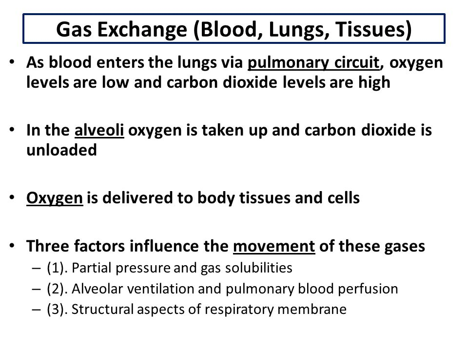 Chemical Factors Chemoreceptors monitor gas levels and H+ levels in the blood 1.