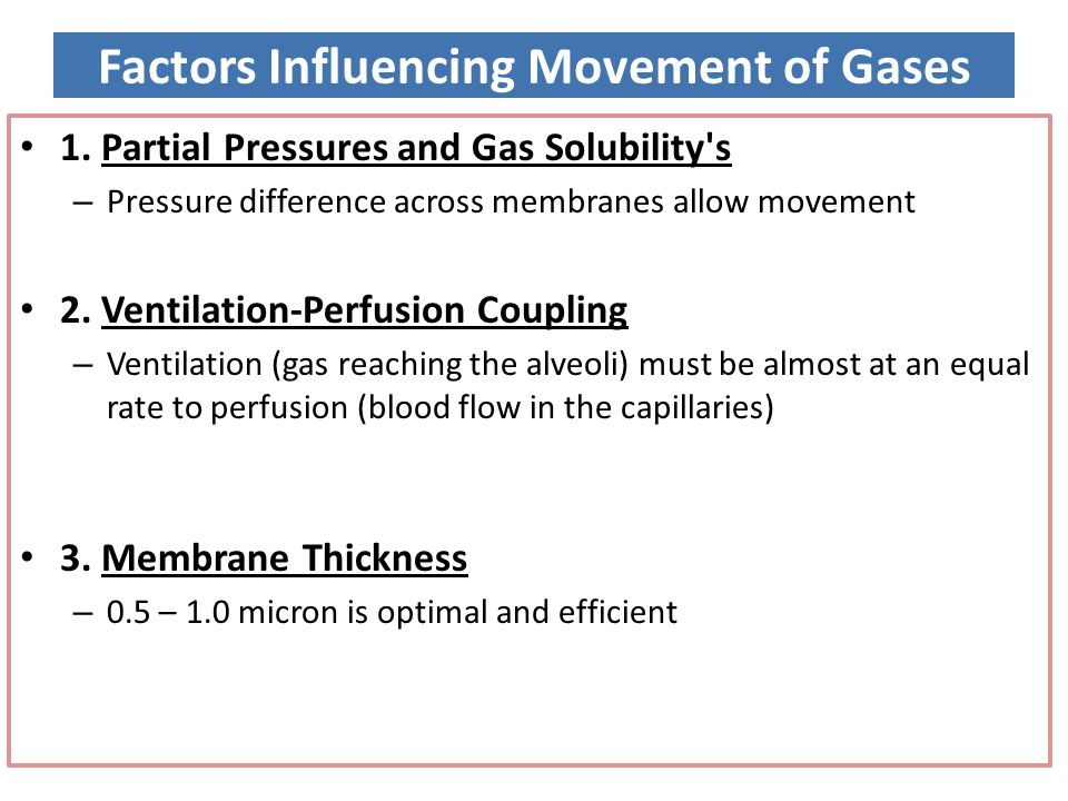 Factors Influencing Movement of Gases 1. Partial Pressures and Gas Solubility's – Pressure difference across membranes allow movement 2. Ventilation-P