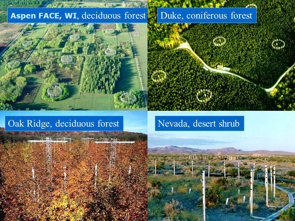 Aspen FACE, WI, deciduous forestDuke, coniferous forest Oak Ridge, deciduous forestNevada, desert shrub