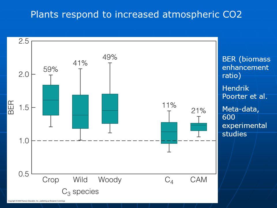 Plants respond to increased atmospheric CO2 BER (biomass enhancement ratio) Hendrik Poorter et al. Meta-data, 600 experimental studies