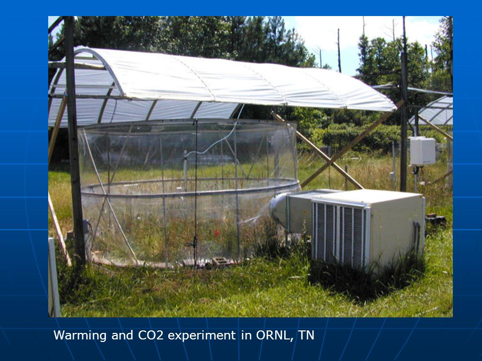 Warming and CO2 experiment in ORNL, TN