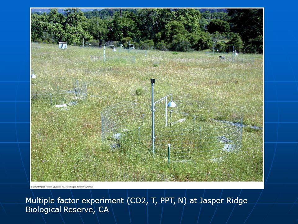 Multiple factor experiment (CO2, T, PPT, N) at Jasper Ridge Biological Reserve, CA