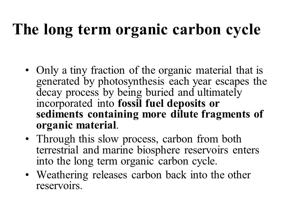 The long term organic carbon cycle Only a tiny fraction of the organic material that is generated by photosynthesis each year escapes the decay proces