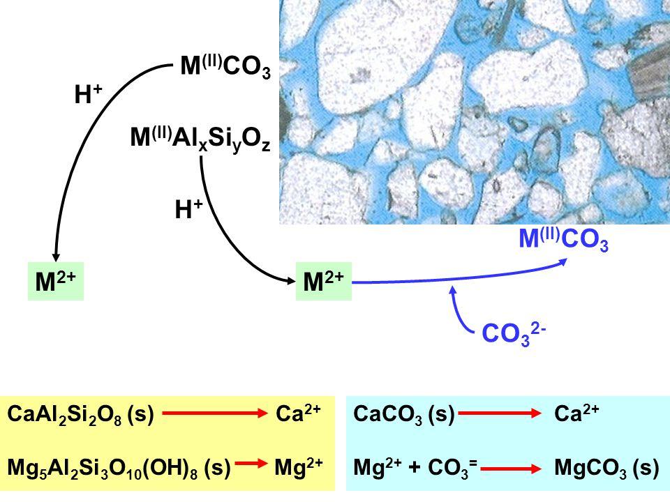 M (II) CO 3 CO 3 2- M (II) Al x Si y O z M (II) CO 3 M 2+ H+H+ H+H+ CaAl 2 Si 2 O 8 (s) Ca 2+ Mg 5 Al 2 Si 3 O 10 (OH) 8 (s) Mg 2+ CaCO 3 (s) Ca 2+ Mg 2+ + CO 3 = MgCO 3 (s)