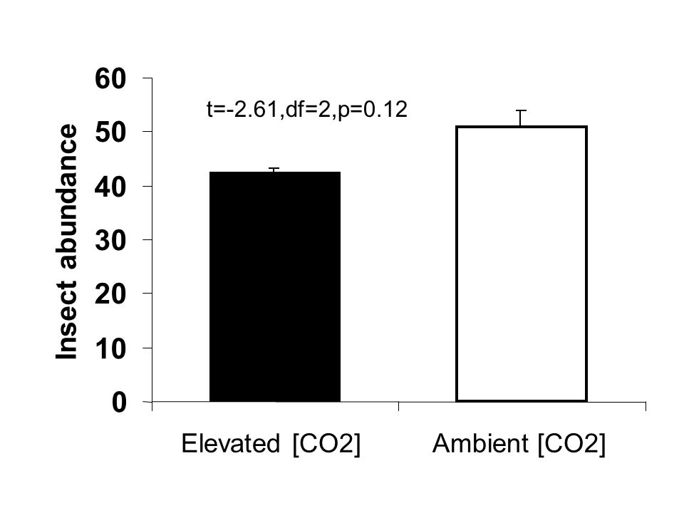 0 10 20 30 40 50 60 Elevated [CO2]Ambient [CO2] Insect abundance t=-2.61,df=2,p=0.12