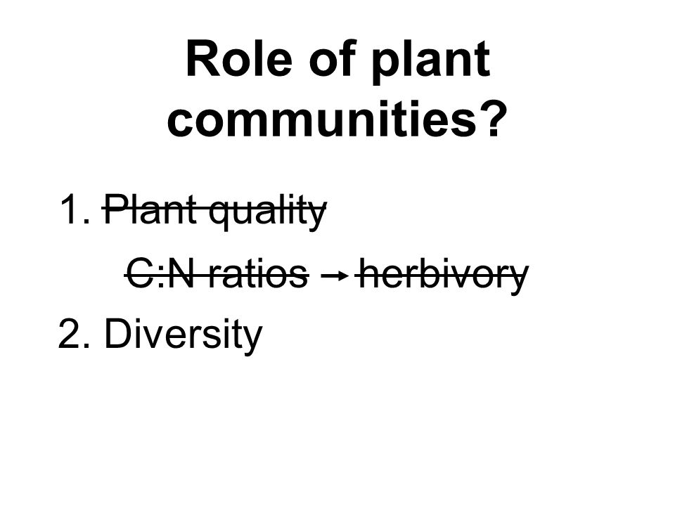 Role of plant communities? 1.Plant quality C:N ratios herbivory 2. Diversity