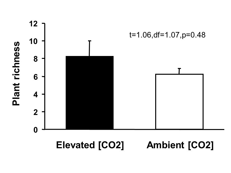 0 2 4 6 8 10 12 Elevated [CO2]Ambient [CO2] Plant richness t=1.06,df=1.07,p=0.48