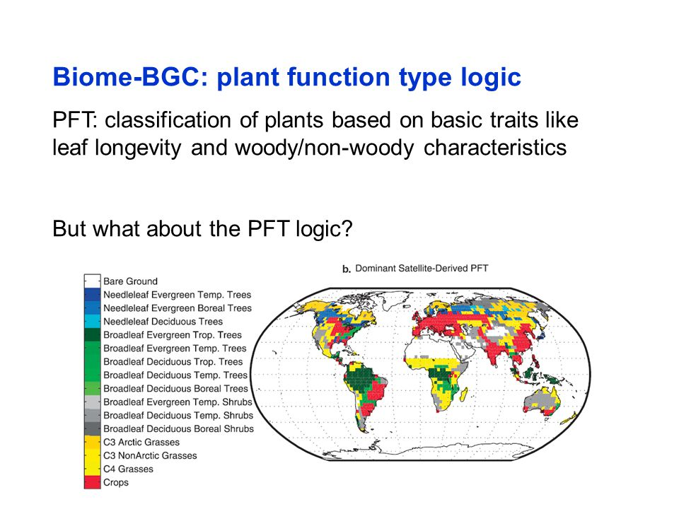 Biome-BGC: plant function type logic PFT: classification of plants based on basic traits like leaf longevity and woody/non-woody characteristics But w