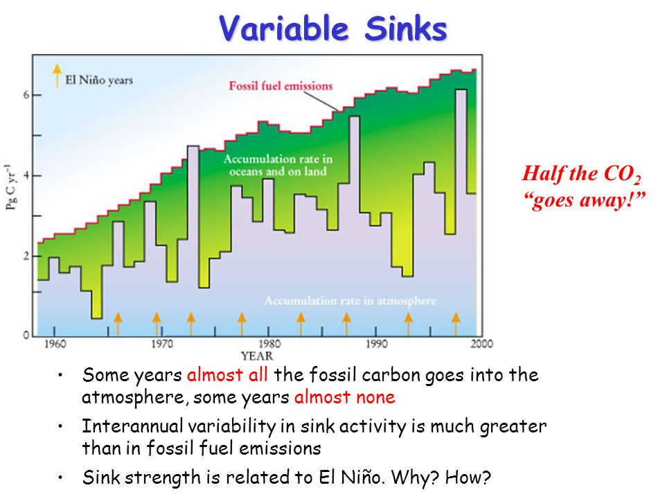 "Variable Sinks Half the CO 2 ""goes away!"" Some years almost all the fossil carbon goes into the atmosphere, some years almost none Interannual variabi"