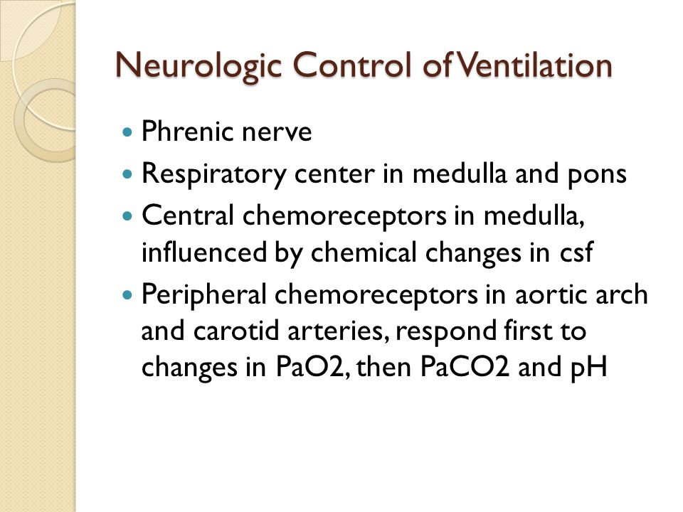 Neurologic Control of Ventilation Phrenic nerve Respiratory center in medulla and pons Central chemoreceptors in medulla, influenced by chemical chang
