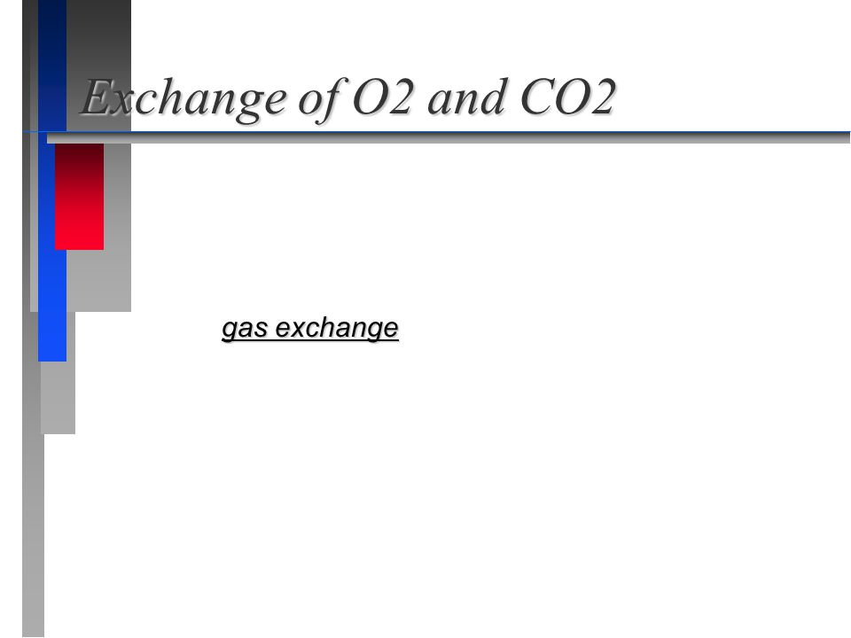 Exchange of O2 and CO2 gas exchange gas exchange