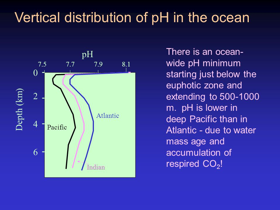 Vertical distribution of pH in the ocean 2 4 6 0 Depth (km) 7.57.77.98.1 pH Atlantic Indian Pacific There is an ocean- wide pH minimum starting just below the euphotic zone and extending to 500-1000 m.