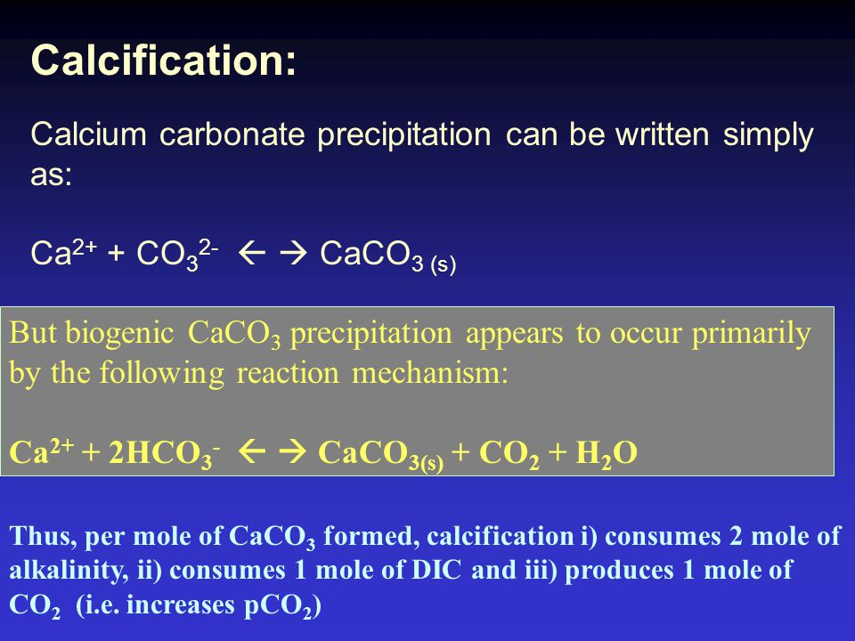 Calcification: Calcium carbonate precipitation can be written simply as: Ca 2+ + CO 3 2-   CaCO 3 (s) But biogenic CaCO 3 precipitation appears to occur primarily by the following reaction mechanism: Ca 2+ + 2HCO 3 -   CaCO 3(s) + CO 2 + H 2 O Thus, per mole of CaCO 3 formed, calcification i) consumes 2 mole of alkalinity, ii) consumes 1 mole of DIC and iii) produces 1 mole of CO 2 (i.e.