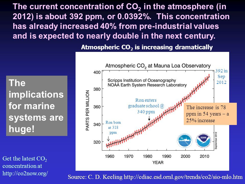 The current concentration of CO 2 in the atmosphere (in 2012) is about 392 ppm, or 0.0392%.