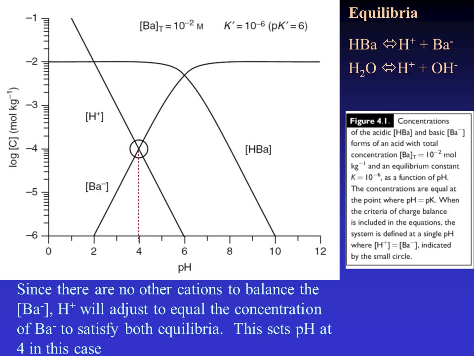 HBa  H + + Ba - H 2 O  H + + OH - Equilibria Since there are no other cations to balance the [Ba - ], H + will adjust to equal the concentration of Ba - to satisfy both equilibria.