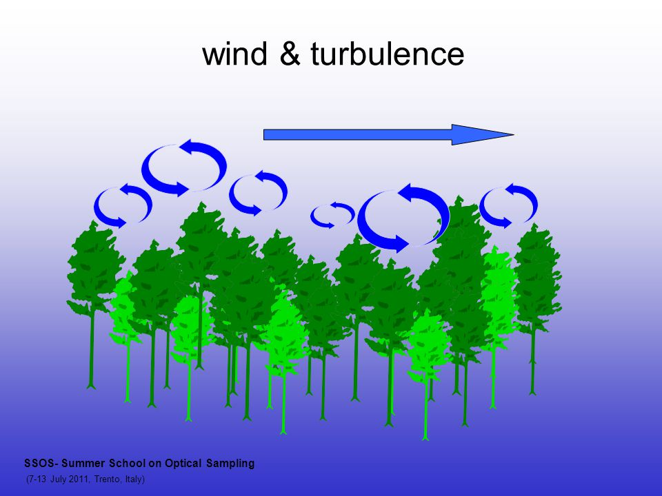 wind & turbulence SSOS- Summer School on Optical Sampling (7-13 July 2011, Trento, Italy)