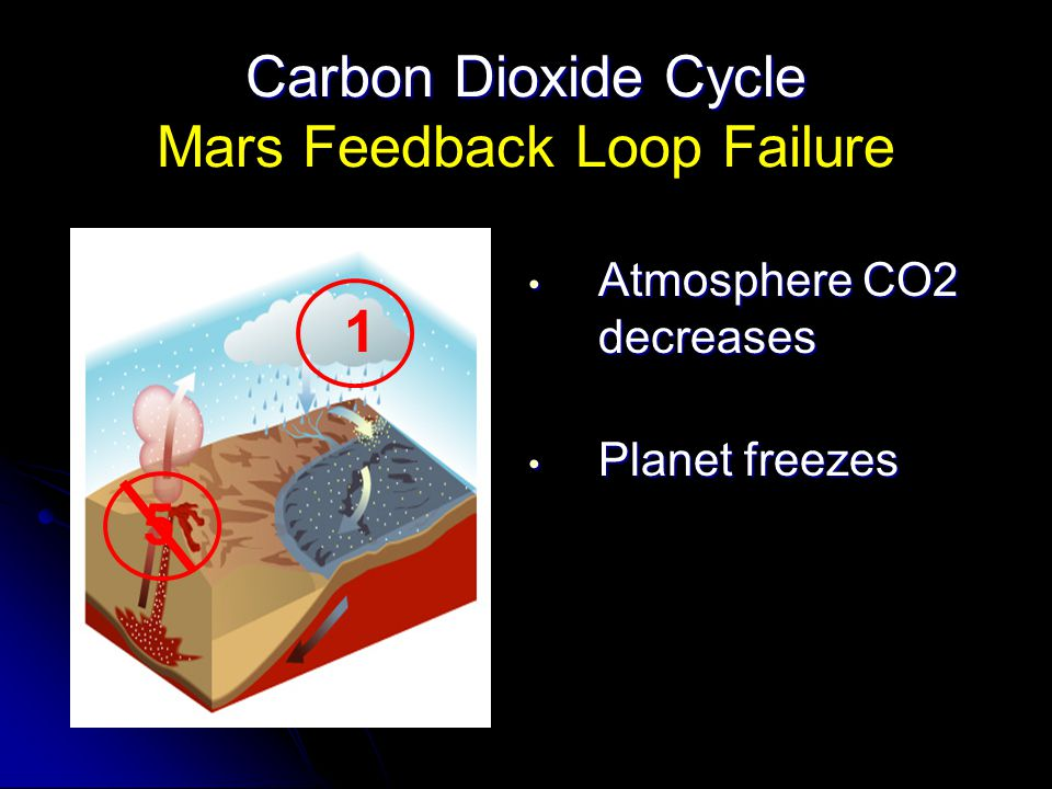Carbon Dioxide Cycle Carbon Dioxide Cycle Mars Feedback Loop Failure Atmosphere CO2 decreases Atmosphere CO2 decreases Planet freezes Planet freezes 1