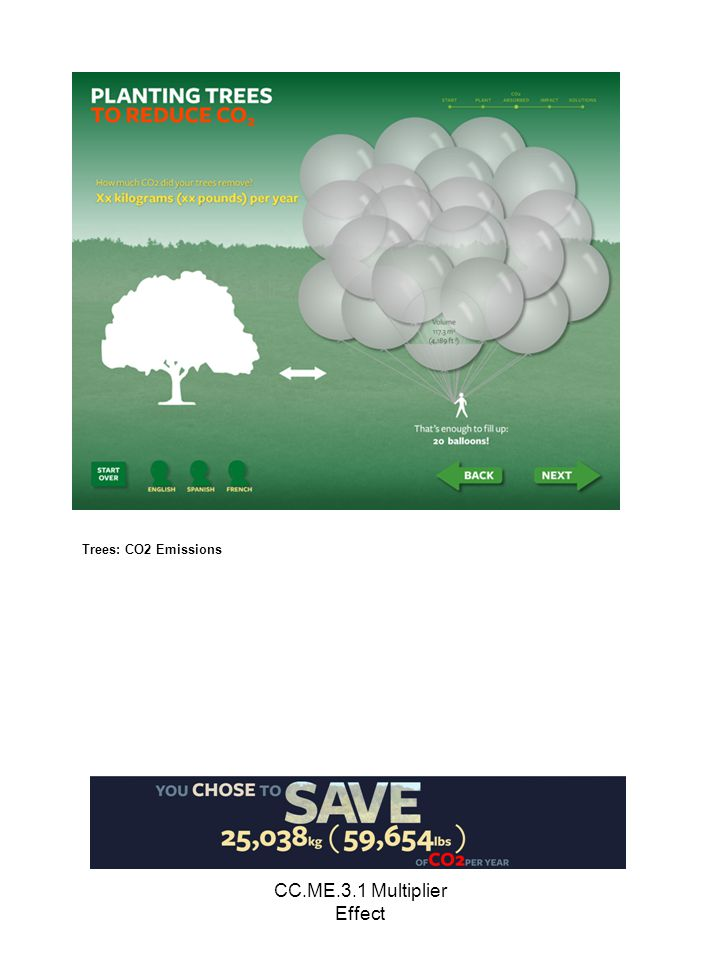 CC.ME.3.1 Multiplier Effect Trees: CO2 Emissions