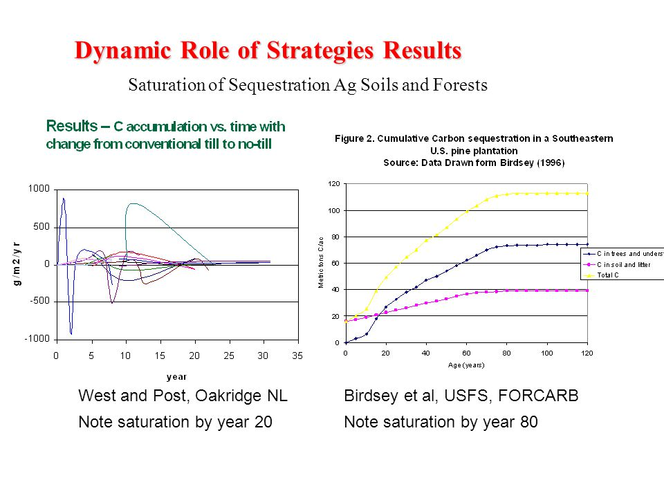 Dynamic Role of Strategies Results Saturation of Sequestration Ag Soils and Forests West and Post, Oakridge NLBirdsey et al, USFS, FORCARB Note saturation by year 20Note saturation by year 80