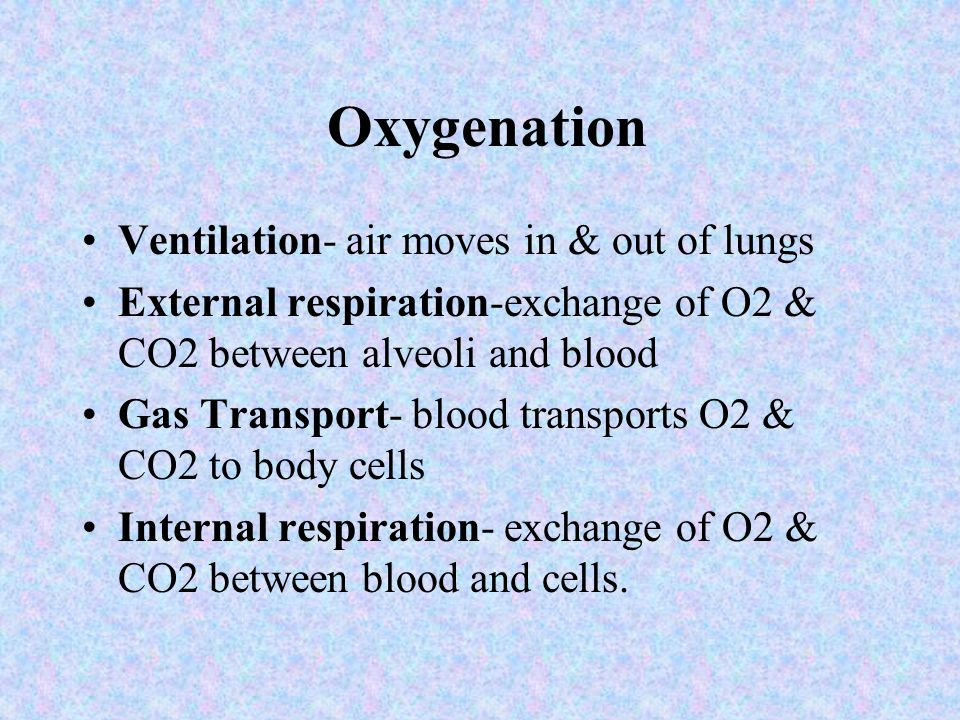 Stressors that Affect Oxygen Needs NUR101 FALL 2008 K. BURGER, MSEd, MSN, RN, CNE LECTURE #19 PPP by Sharon Niggemeier RN, MSN Revised October 2005 by