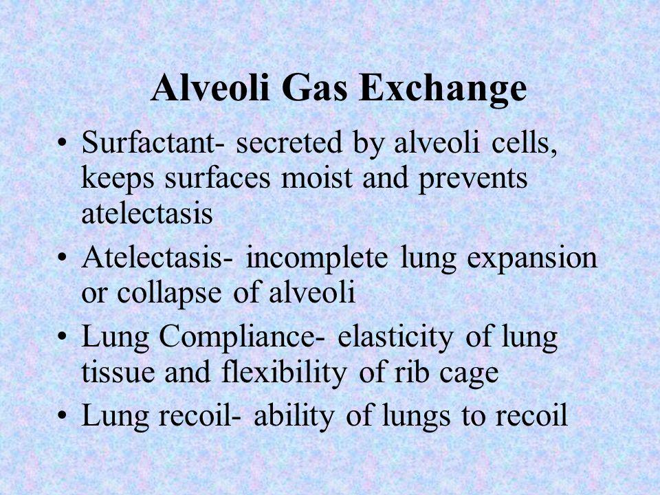 Alveoli Gas Exchange Air reaches alveoli Oxygen from alveoli space moves into pulmonary capillary (oxygen uptake) via diffusion Oxygen diffuses across