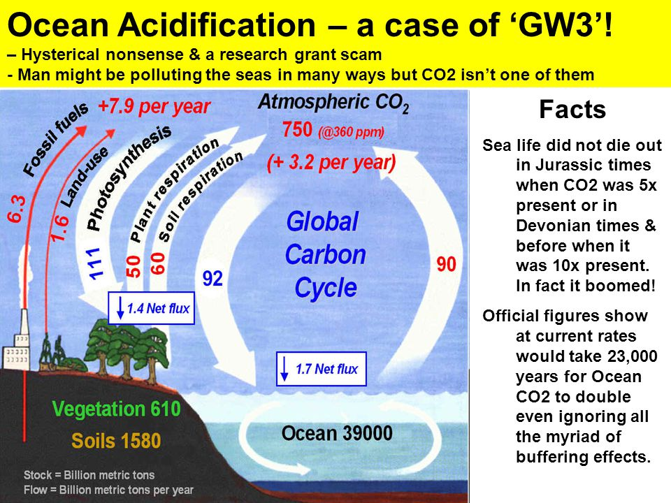 Ocean Acidification – a case of 'GW3'! – Hysterical nonsense & a research grant scam - Man might be polluting the seas in many ways but CO2 isn't one