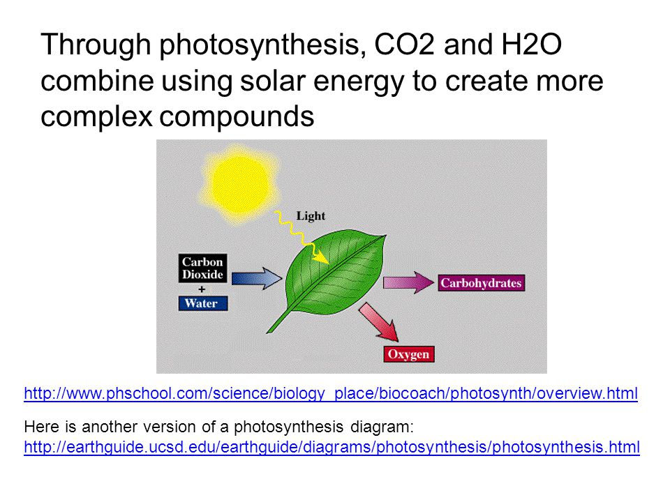Here is another version of a photosynthesis diagram: http://earthguide.ucsd.edu/earthguide/diagrams/photosynthesis/photosynthesis.html http://earthguide.ucsd.edu/earthguide/diagrams/photosynthesis/photosynthesis.html http://www.phschool.com/science/biology_place/biocoach/photosynth/overview.html Through photosynthesis, CO2 and H2O combine using solar energy to create more complex compounds