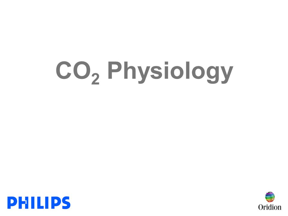 2 What is Carbon Dioxide.