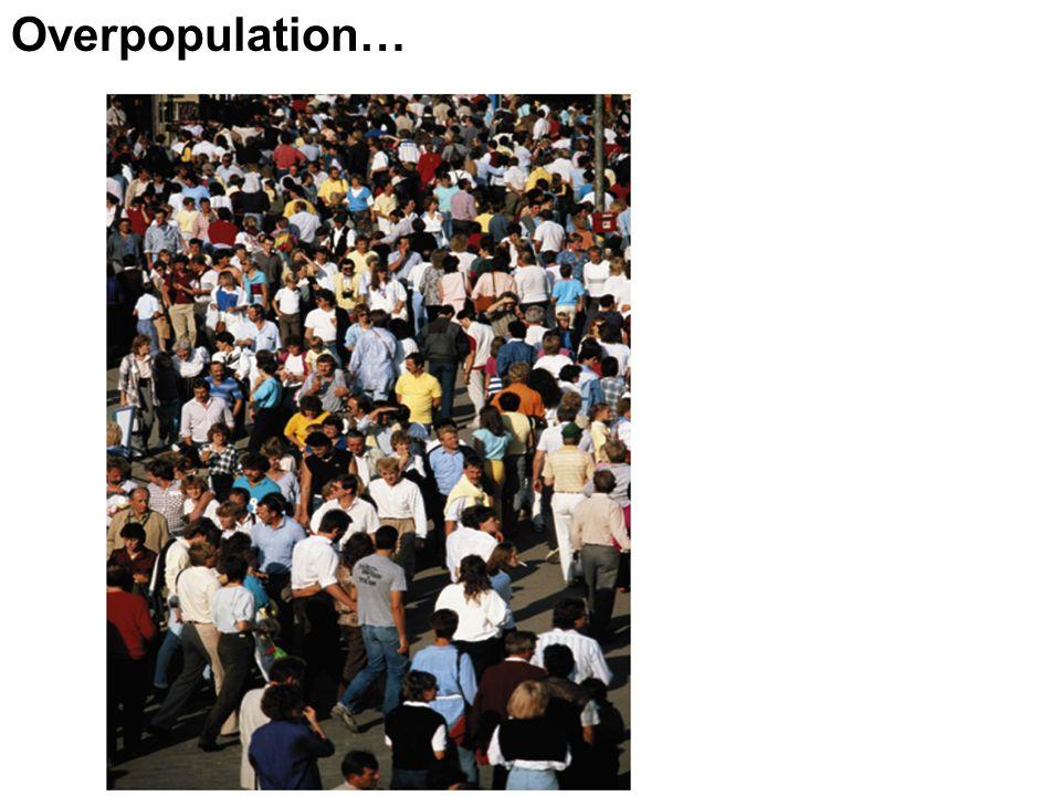Overpopulation…