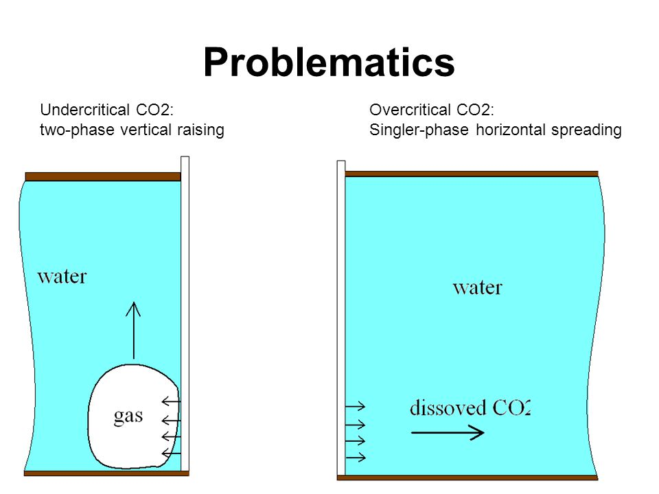 Problematics Undercritical CO2: two-phase vertical raising Overcritical CO2: Singler-phase horizontal spreading