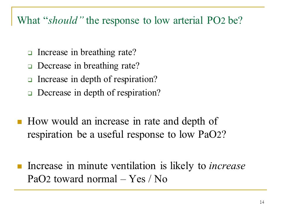 """What """"should"""" the response to low arterial PO 2 be?  Increase in breathing rate?  Decrease in breathing rate?  Increase in depth of respiration? """