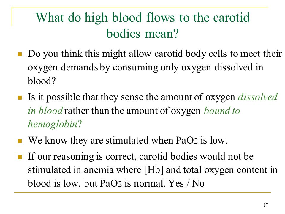 What do high blood flows to the carotid bodies mean? Do you think this might allow carotid body cells to meet their oxygen demands by consuming only o