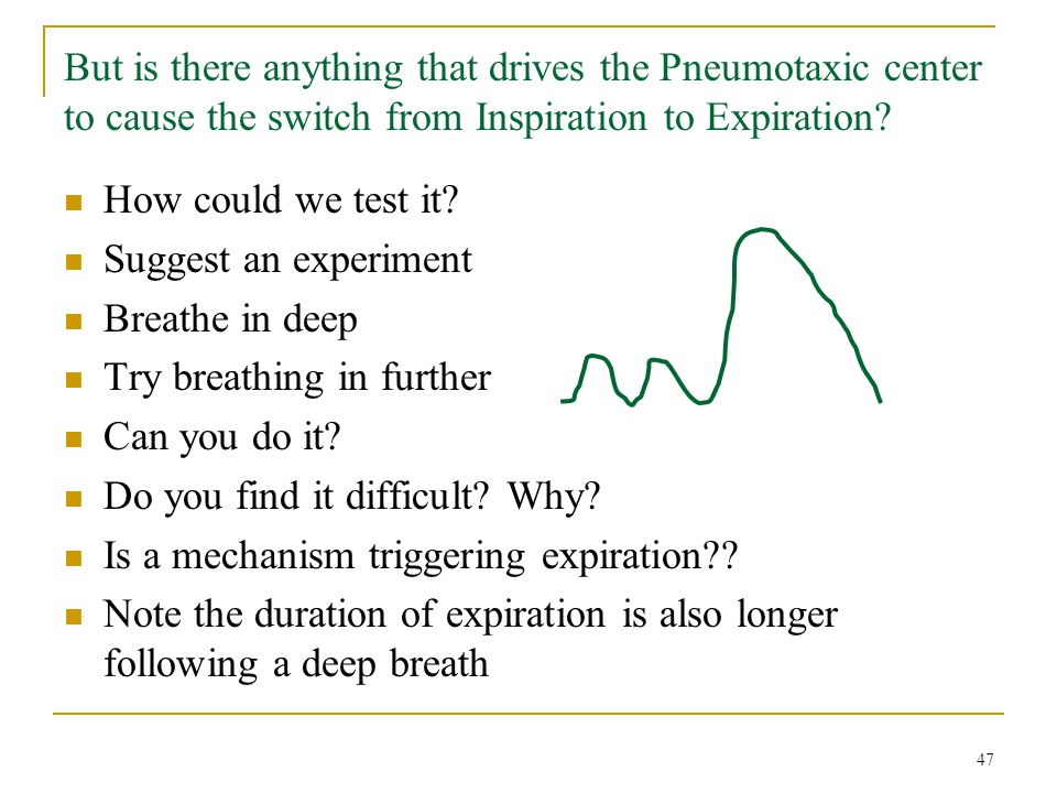 But is there anything that drives the Pneumotaxic center to cause the switch from Inspiration to Expiration? How could we test it? Suggest an experime