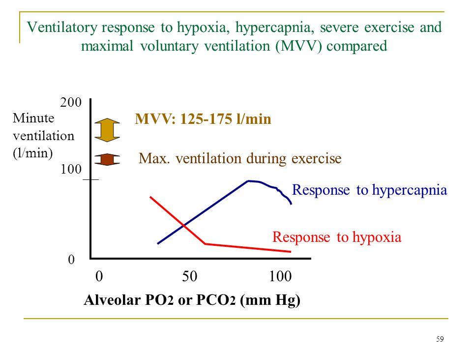 Ventilatory response to hypoxia, hypercapnia, severe exercise and maximal voluntary ventilation (MVV) compared Alveolar PO 2 or PCO 2 (mm Hg) Minute v