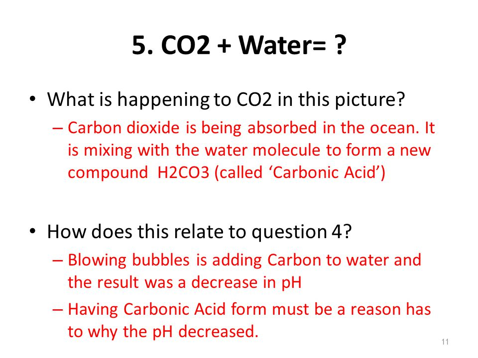 5.CO2 + Water= . What is happening to CO2 in this picture.