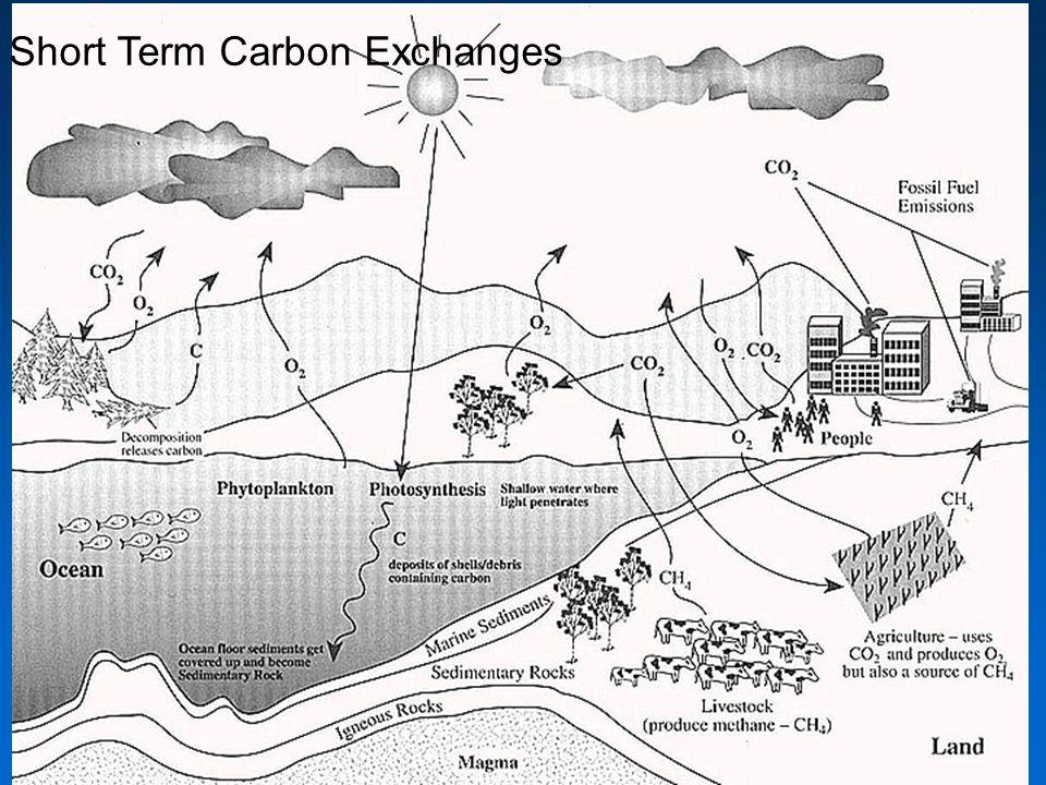 Short Term Carbon Exchanges
