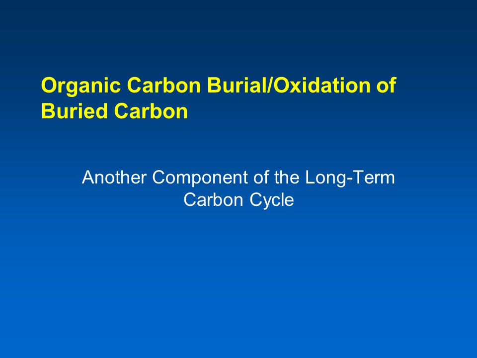 Organic Carbon Burial/Oxidation of Buried Carbon Another Component of the Long-Term Carbon Cycle