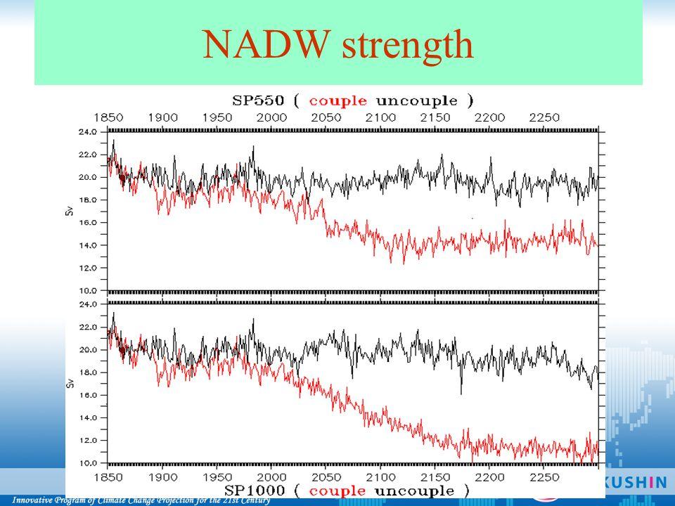 NADW strength