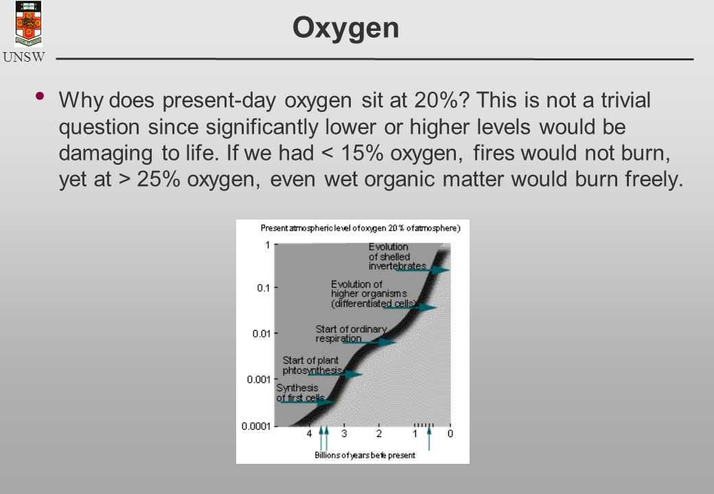 UNSW Oxygen Why does present-day oxygen sit at 20%.