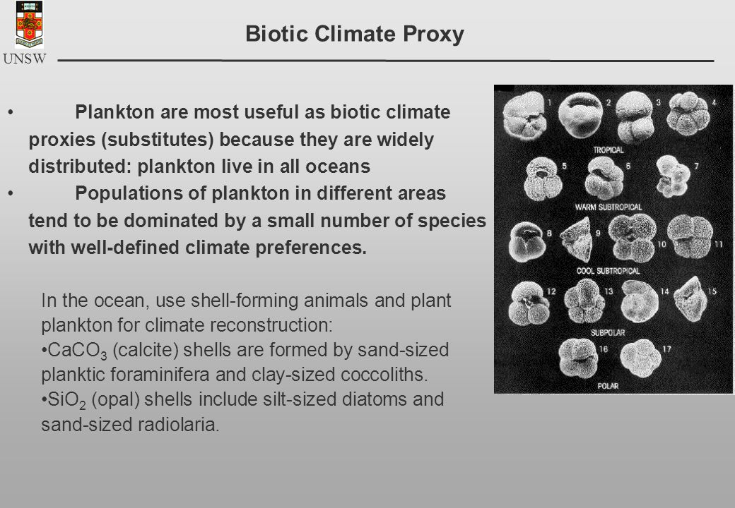 UNSW Plankton are most useful as biotic climate proxies (substitutes) because they are widely distributed: plankton live in all oceans Populations of plankton in different areas tend to be dominated by a small number of species with well-defined climate preferences.