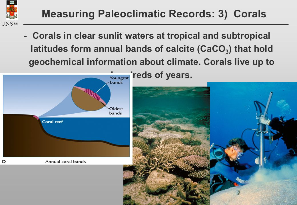 UNSW -Corals in clear sunlit waters at tropical and subtropical latitudes form annual bands of calcite (CaCO 3 ) that hold geochemical information about climate.