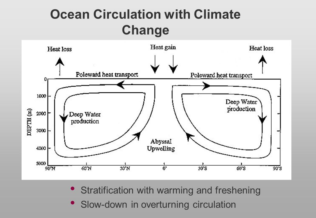 Ocean Circulation with Climate Change Stratification with warming and freshening Slow-down in overturning circulation