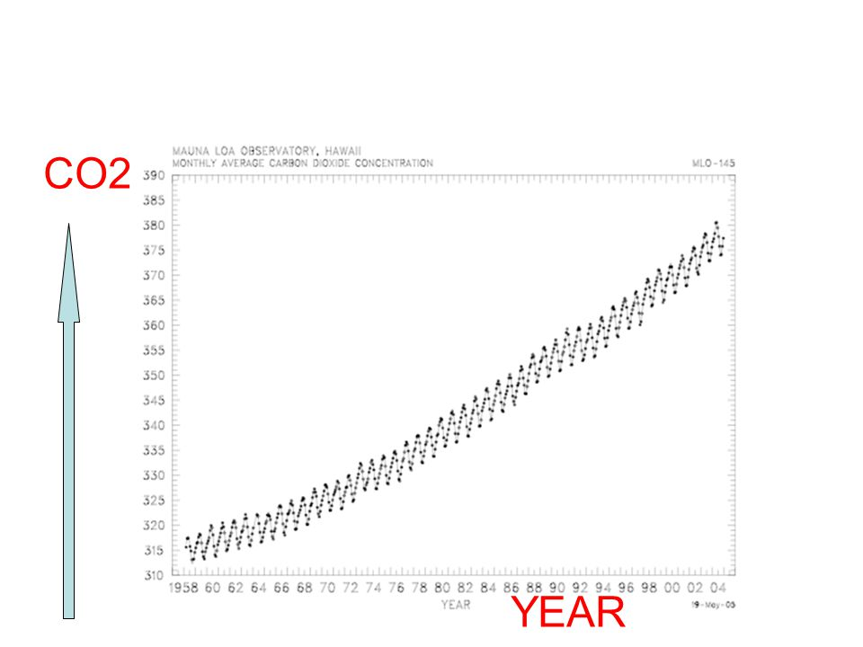 CO2 YEAR