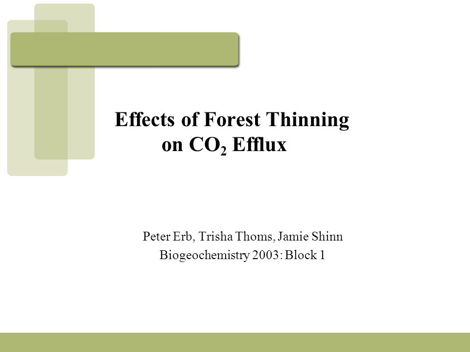 Effects of Forest Thinning on CO 2 Efflux Peter Erb, Trisha Thoms, Jamie Shinn Biogeochemistry 2003: Block 1