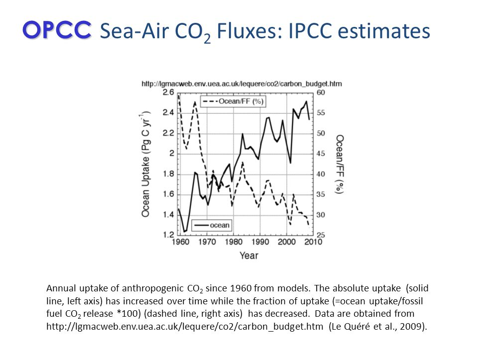 Annual uptake of anthropogenic CO 2 since 1960 from models.