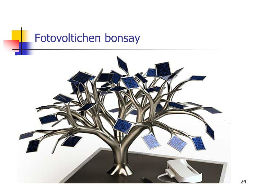 Fotovoltichen bonsay 24