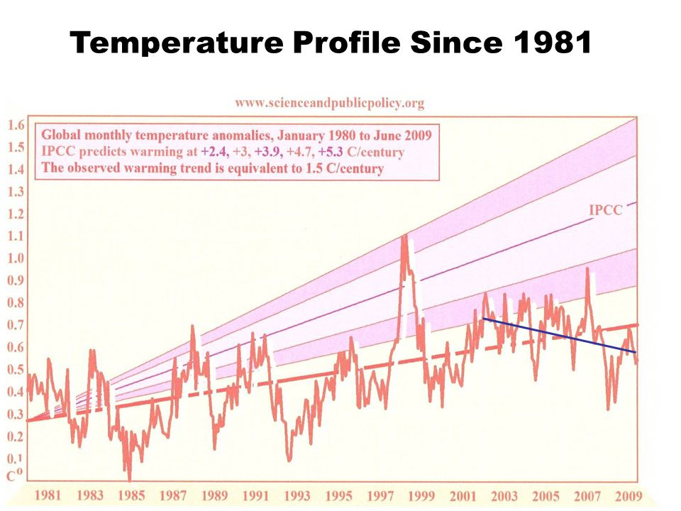 Temperature Profile Since 1981