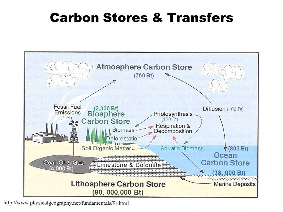 Carbon Stores & Transfers (760 Bt) (7 Bt) (2,300 Bt) (4,000 Bt) (80, 000,000 Bt) (120 Bt) (100 Bt) (38, 000 Bt) (800 Bt)