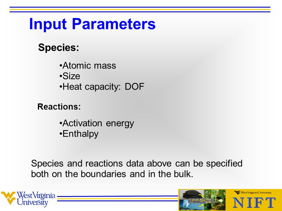 Input Parameters Species: Reactions: Atomic mass Size Heat capacity: DOF Activation energy Enthalpy Species and reactions data above can be specified both on the boundaries and in the bulk.